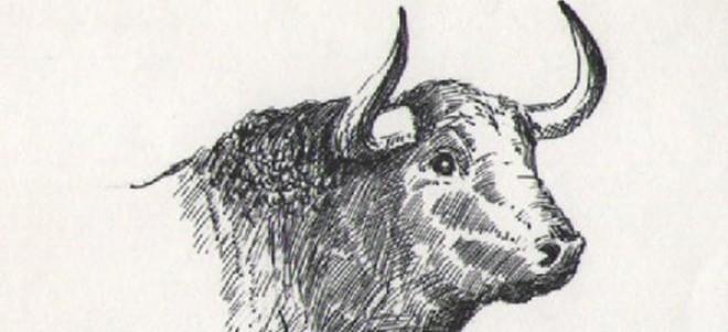 Toriles Todo Listo Para Las Clases De Dibujando Al Toro De Lidia